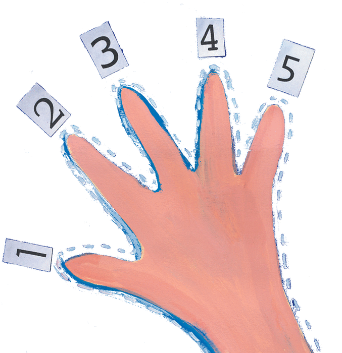 One, two, three, four, five - illustration 12