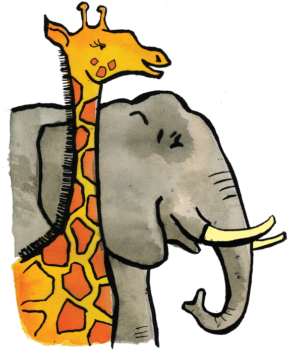 The elephant and the giraffe - illustration 1