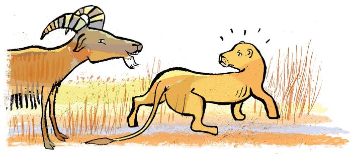 La Lionne et l'Hyène - illustration 3
