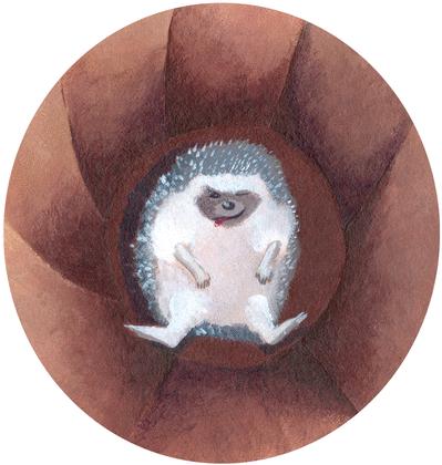 Le chacal et le hérisson - illustration 5