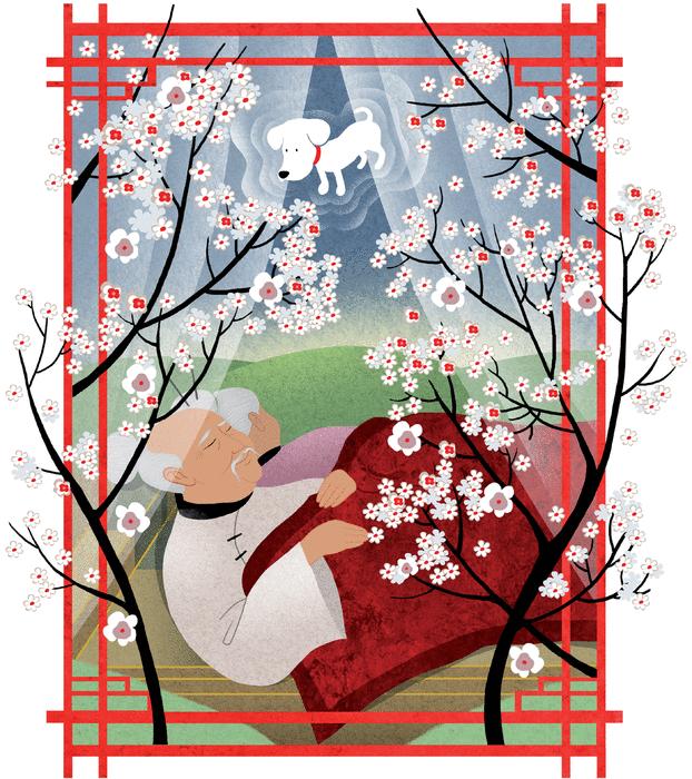 Le grand-père qui faisait fleurir les arbres - illustration 2