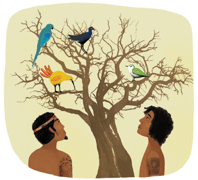 Les arbres et le kiwi - illustration 1