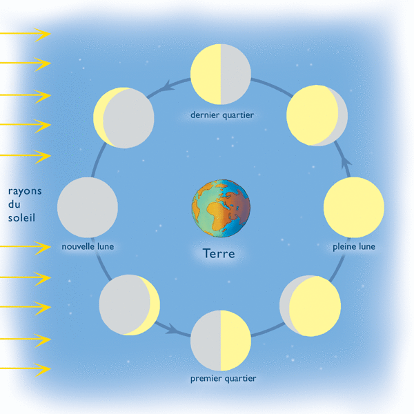 Les trésors de la nuit - illustration 2