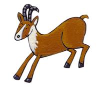 Les animaux de la montagne - illustration 4