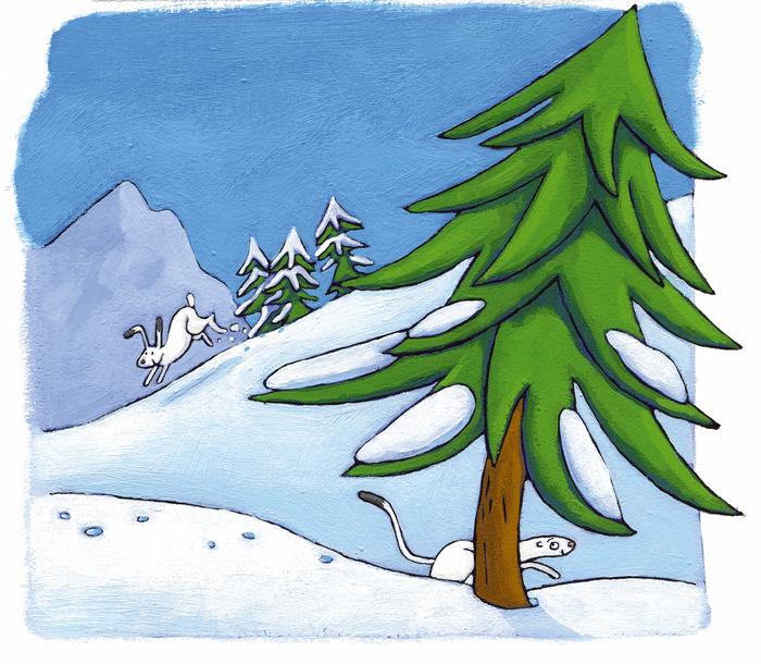 Les animaux de la montagne - illustration 8