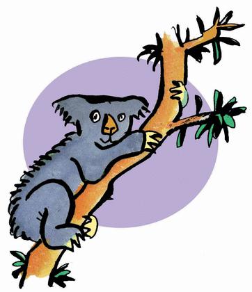 L'Australie - illustration 2