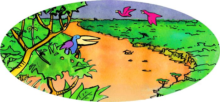 Le Brésil - illustration 1