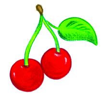 La branche morte - illustration 6