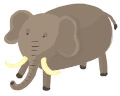 Les animaux domestiques - illustration 8