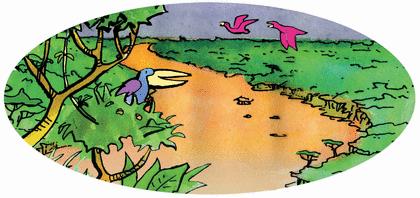 Le petit chacal et le chameau - illustration 5