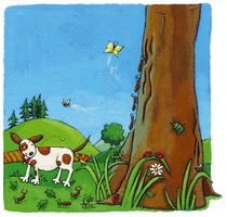 Les animaux de la montagne - illustration 9