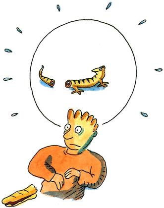 Jojo sans peur - illustration 5