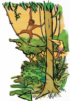 Le Mexique - illustration 12