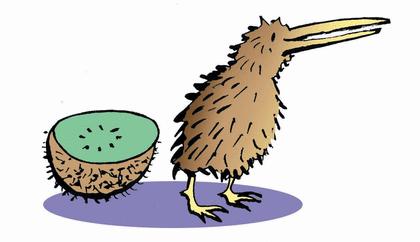 Les arbres et le kiwi - illustration 2