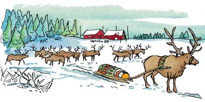 C'est Noël ! - illustration 9