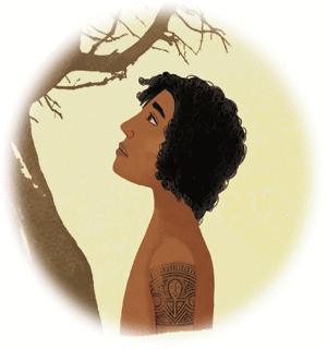 Les arbres et le kiwi - illustration 6