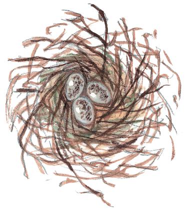 Le Corbeau et le Renard - illustration 9