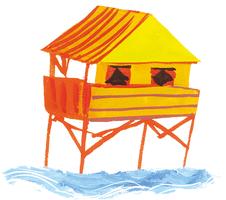 Les mouettes du lac Salé - illustration 7