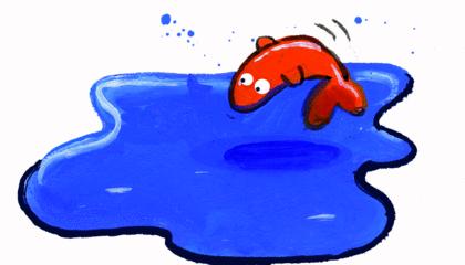 L'eau de la terre - illustration 5