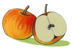 L'automne - illustration 13
