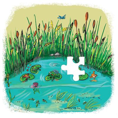 Il pleut, il mouille ! - illustration 7