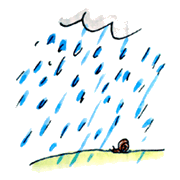 Rain, rain, go away - illustration 3