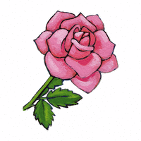 La rose bleue - illustration 7