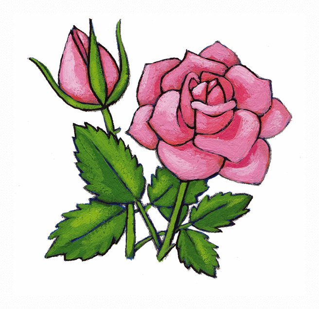 La rose bleue - illustration 6