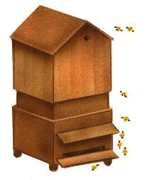 Les abeilles - illustration 15